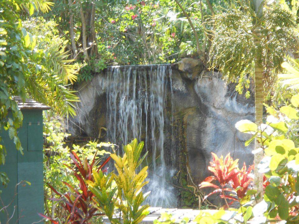 Freeport Bahamas- Garden of the Groves