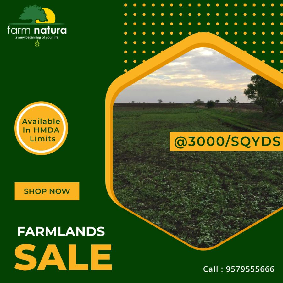 Farmnatura helps you find the best farmlands with rich