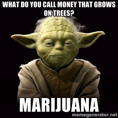 Pin On Weed Humor