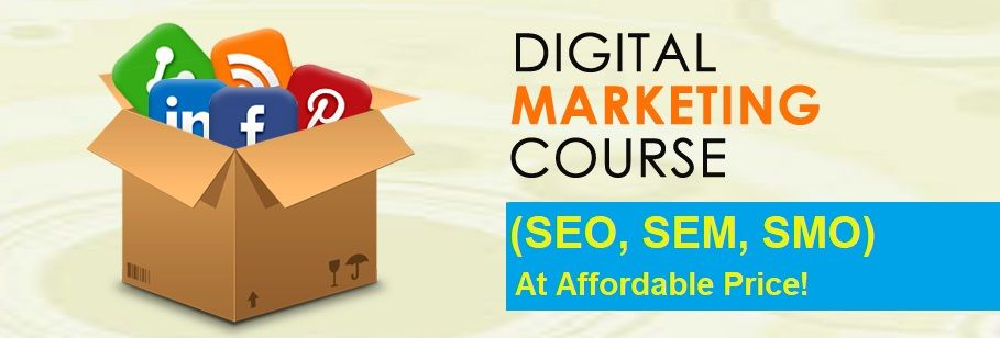 If You Are Seeking A Professional Institute To Do The Digital Marketing Training Course In Noida Digital Marketing Marketing Courses Internet Marketing Course