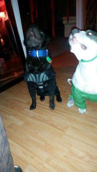 Darth Vader and hulk