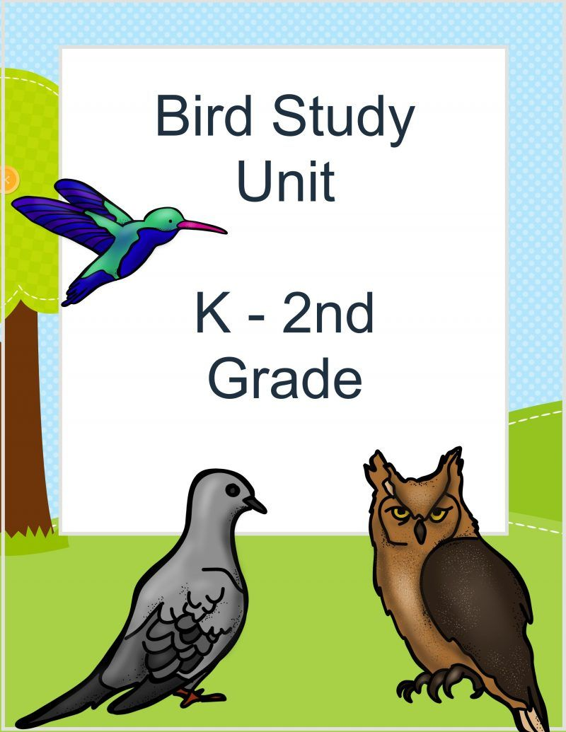 Free Backyard Bird Lesson Pack The Relaxed Homeschool Bird Unit Study Relaxed Homeschooling Nature School [ 1035 x 800 Pixel ]