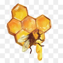 Free Download Beehive Honeycomb Honey Bee Vector Bee Nest Png 1600 1600 And 469 15 Kb Bee Painting Honey Bee Drawing Beehive Drawing