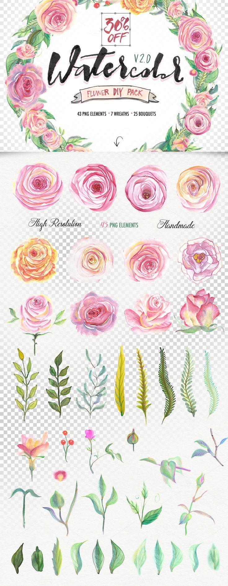 The Beautiful October Bundle Watercolor flowers