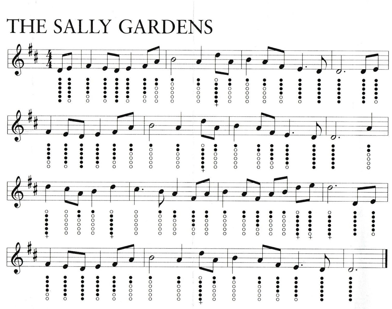 6ea11db366d5968d24c218ddb9d92f82 - The Sally Gardens Tin Whistle Notes