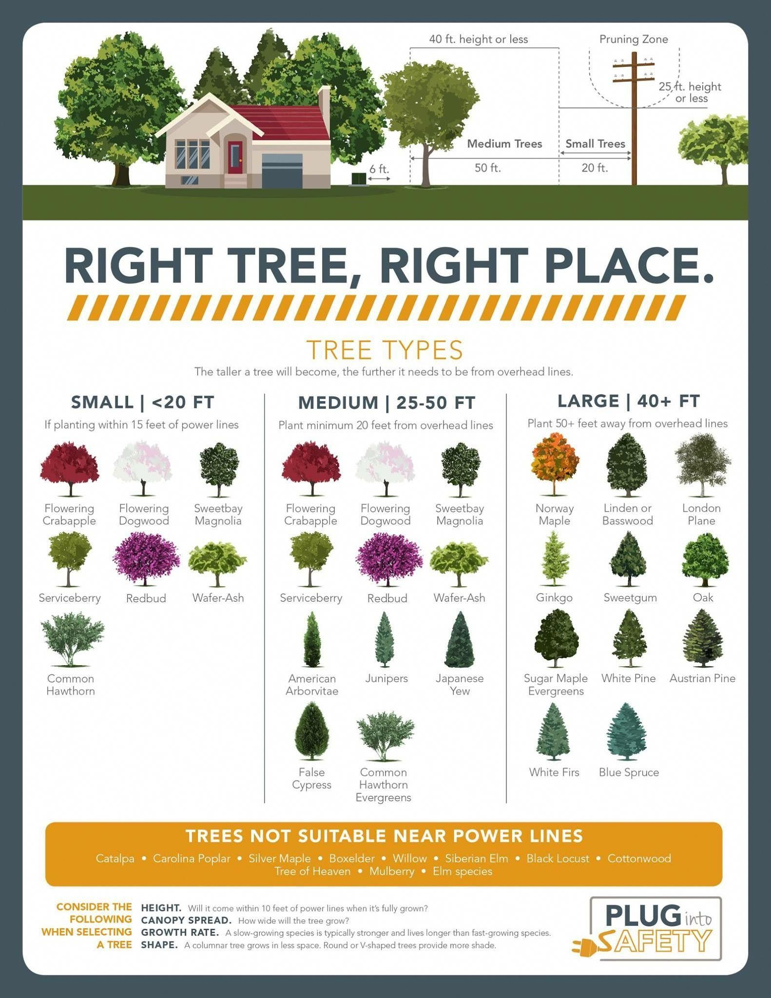 Pin By Sharon Pellum On My Home In 2020 Garden Design Flower Garden Plans Flower Garden Design