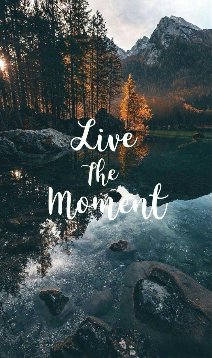Live the moment Poster con citazioni, Sfondi, Sfondo di