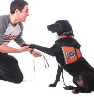 Nursing Student Blake Butler First Began Fostering A Service Dog