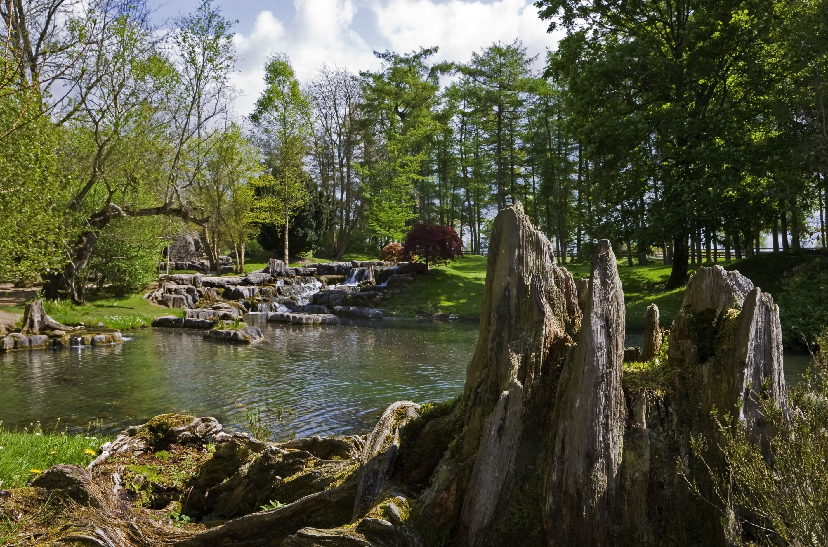 The National Stud And Japanese Gardens