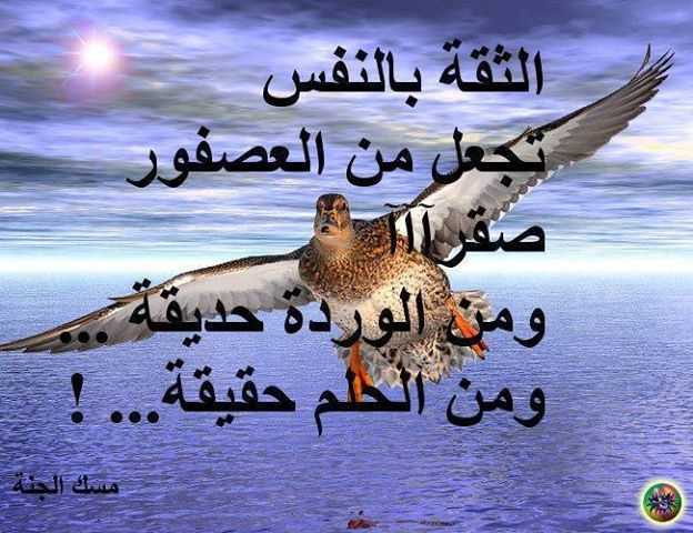 كلام جميل 2 منتديات حلا الكويت
