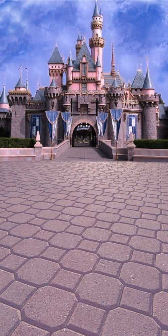 Beautiful castle Backdrop Computer Printed Photography Background Digital Printing Custom Floral Wedding Birthday Party Baptism zjz-827