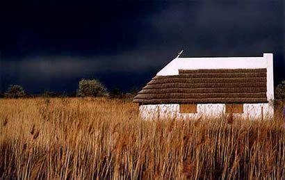 camargue cabane de gardian camargue pinterest camargue cabanes et la provence. Black Bedroom Furniture Sets. Home Design Ideas