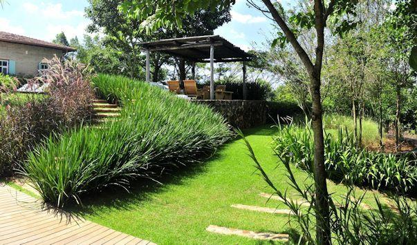 Diseño de exteriores jardines modernos y tropicales - jardines modernos
