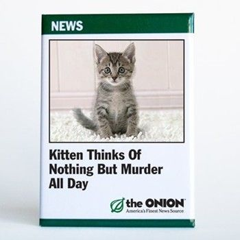 Bad kitty Kittens, Gifts for pet lovers, Bad cats