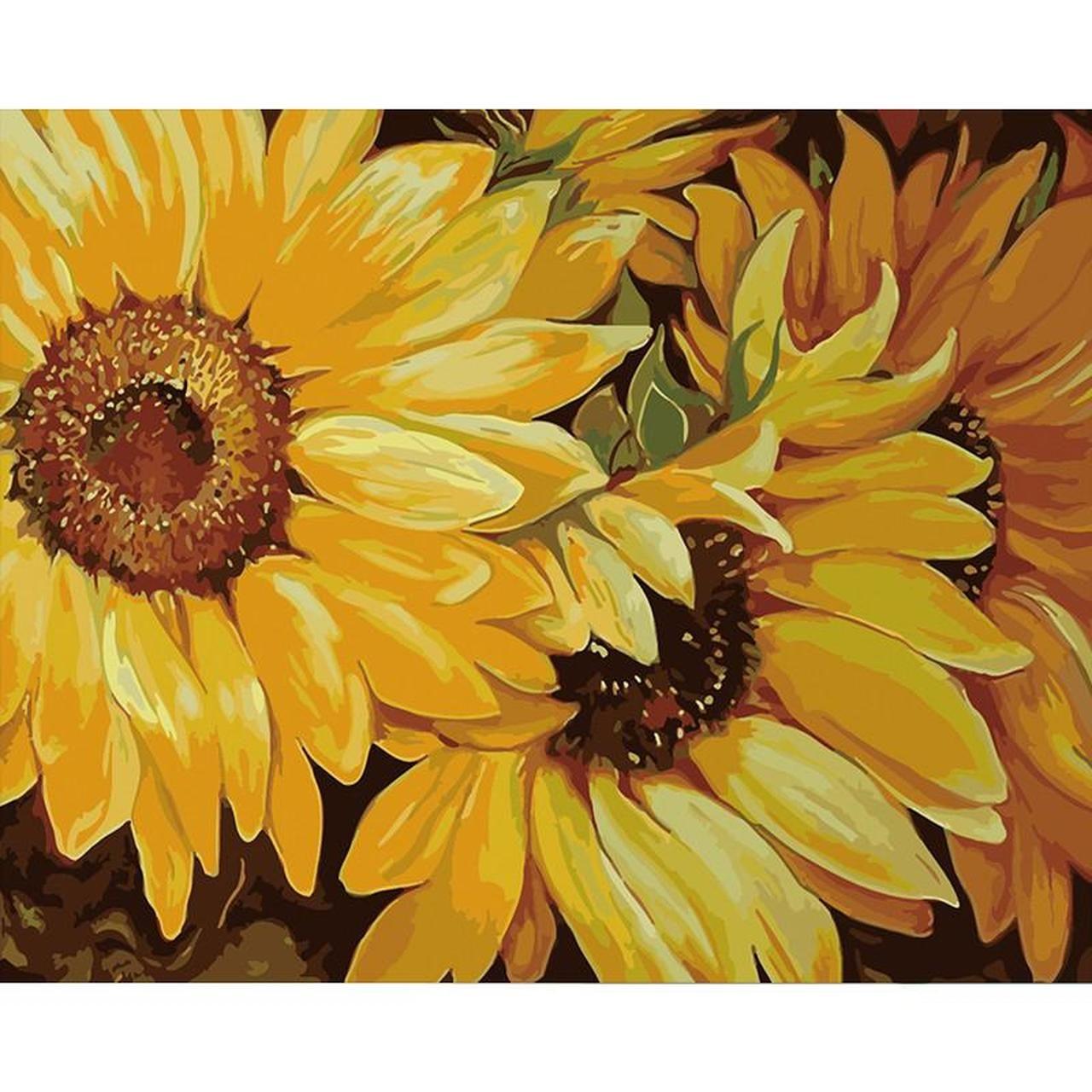 Sunflower Elegance Diy Painting By Numbers Kit In 2020 Diy Painting Paint By Number Sunflower