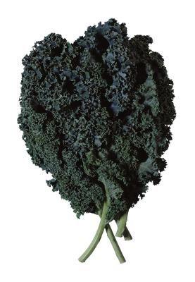 39 best SPINACH-KALE-COLLARD GREENS-TURNIP GREENS- images ...  |Kale Turnip Casserole