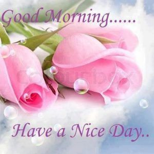 Good Morning gif beautiful – Sognando i Sogni…