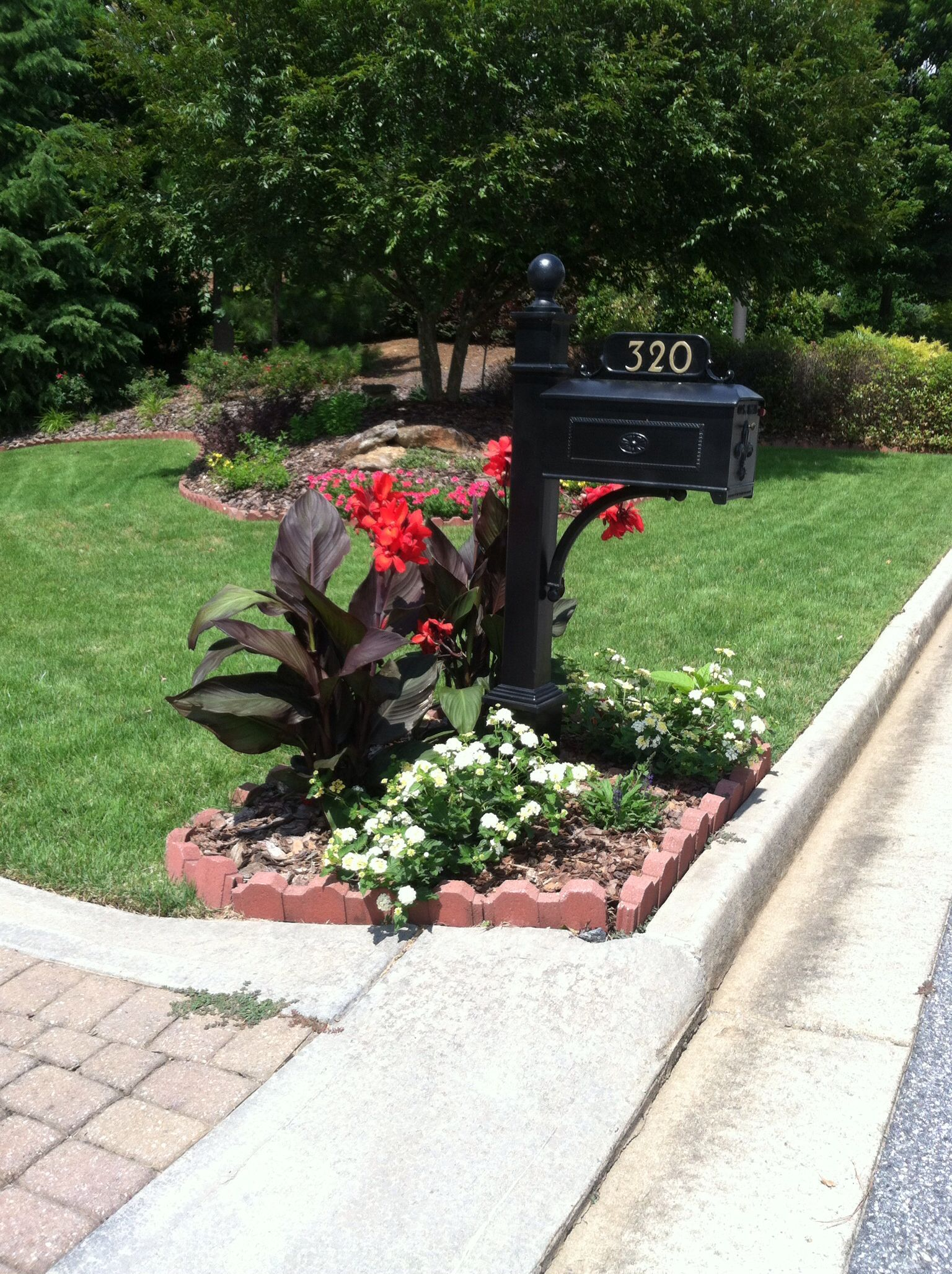 New Flowers At The Mailbox This Spring Cana Lilies And Lantana With