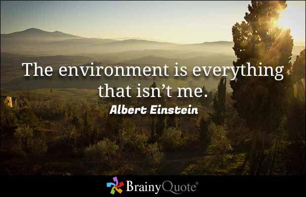 Albert Einstein Quotes Albert Einstein Pinterest