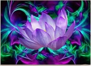Pin by telma on universo pinterest shop purple lotus flower and its meaning placemat created by laureenr mightylinksfo