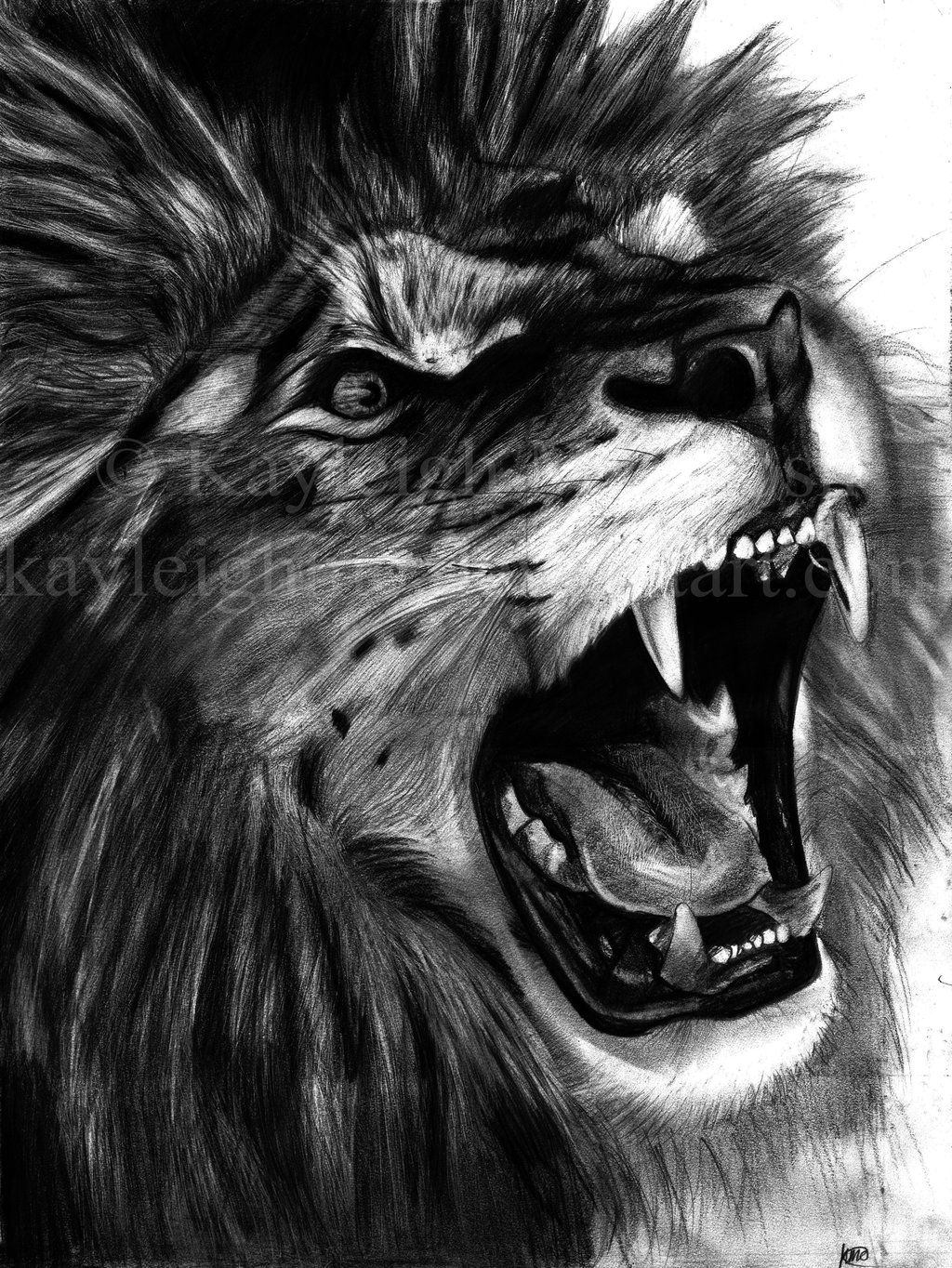 Angry Lion By Kayleighmc D64ws0a Jpg 1024 1364 Lion Drawing Lion Sketch Lion Lion face outlined front svg. lion drawing lion sketch