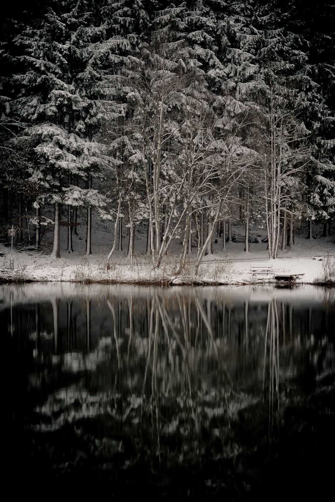 ceekayone: November 2012 Winter begins …