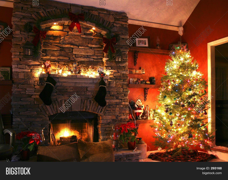 Christmas Tree Next To Fireplace Photo Christmas Tree Christmas Tree And Fireplace Christmas Decorations
