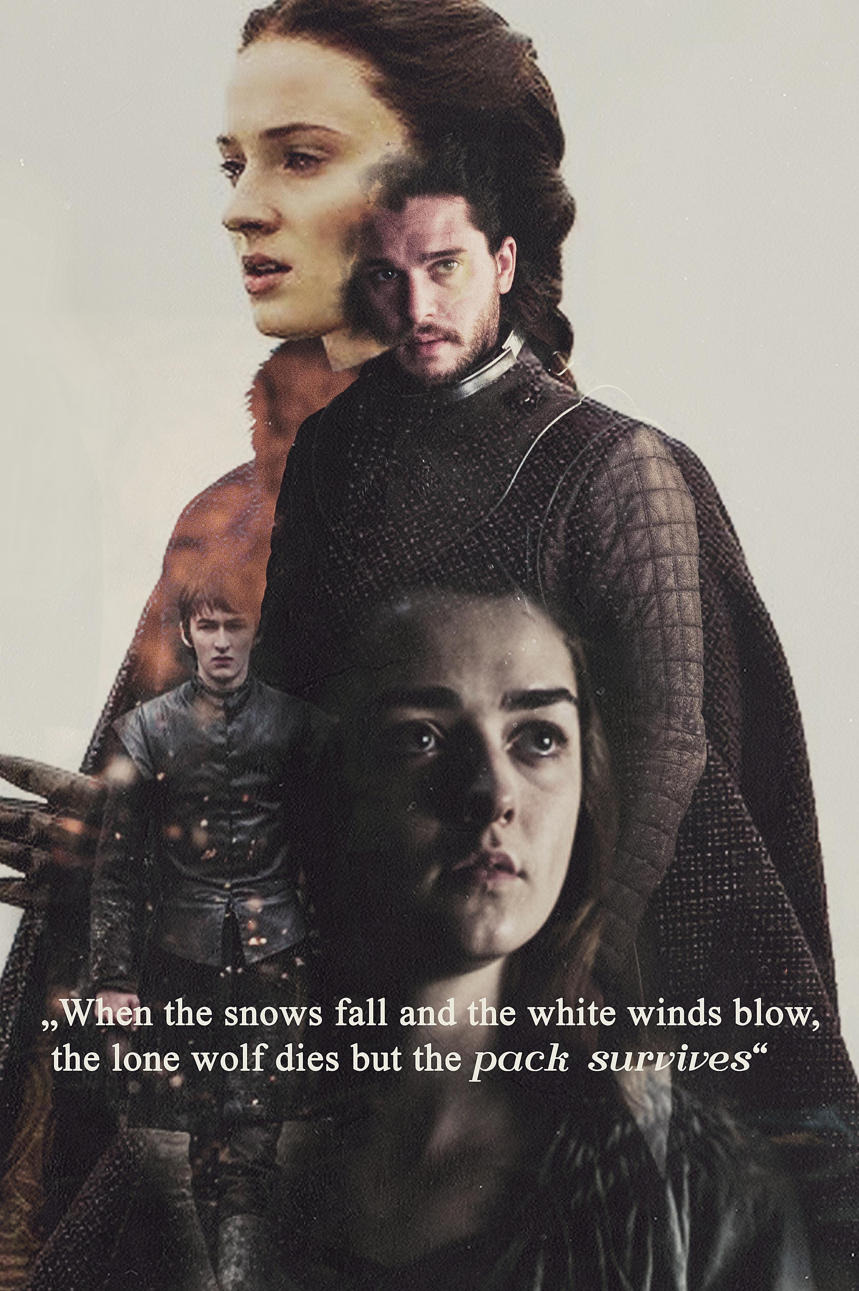 Game Of Thrones Jon Snow Sansa Stark Arya Stark Jonarys Season Got Edit Got Winter Is Coming The Pack Sur Jon Snow Jon And Sansa Game Of Thrones Sansa