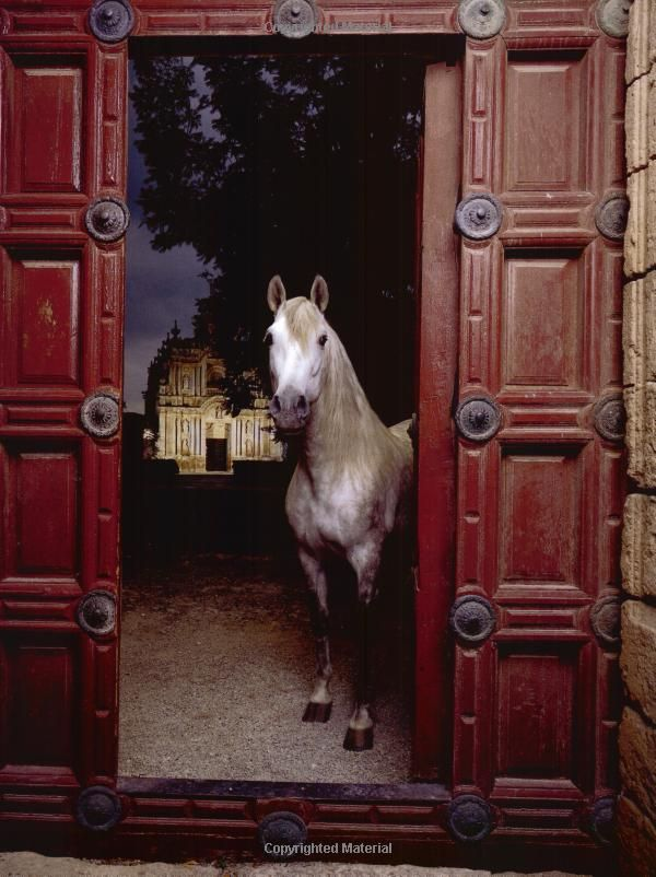 Mi animal favorito! Que maravilla!...look at the mansion in the background .beautiful horse and stables too.