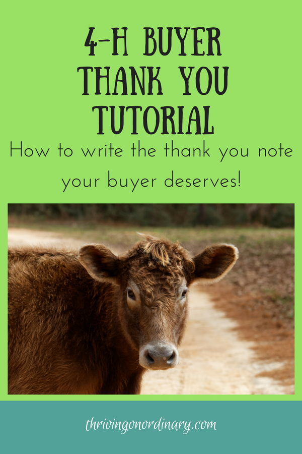 4 H Buyer Thank You Tutorial A Well Crafted Thank You Is A Thing Of Beauty Market Animal Projects Parenting Teens And 4 H Showing Livestock Animal Projects
