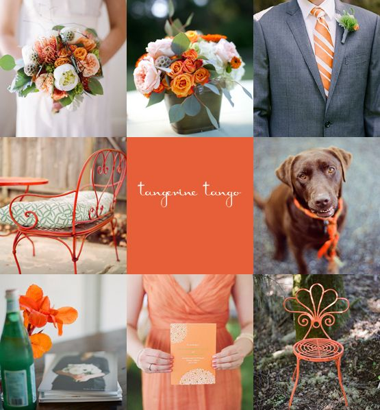Pantone Color of The Year || Tangerine || Wedding Style