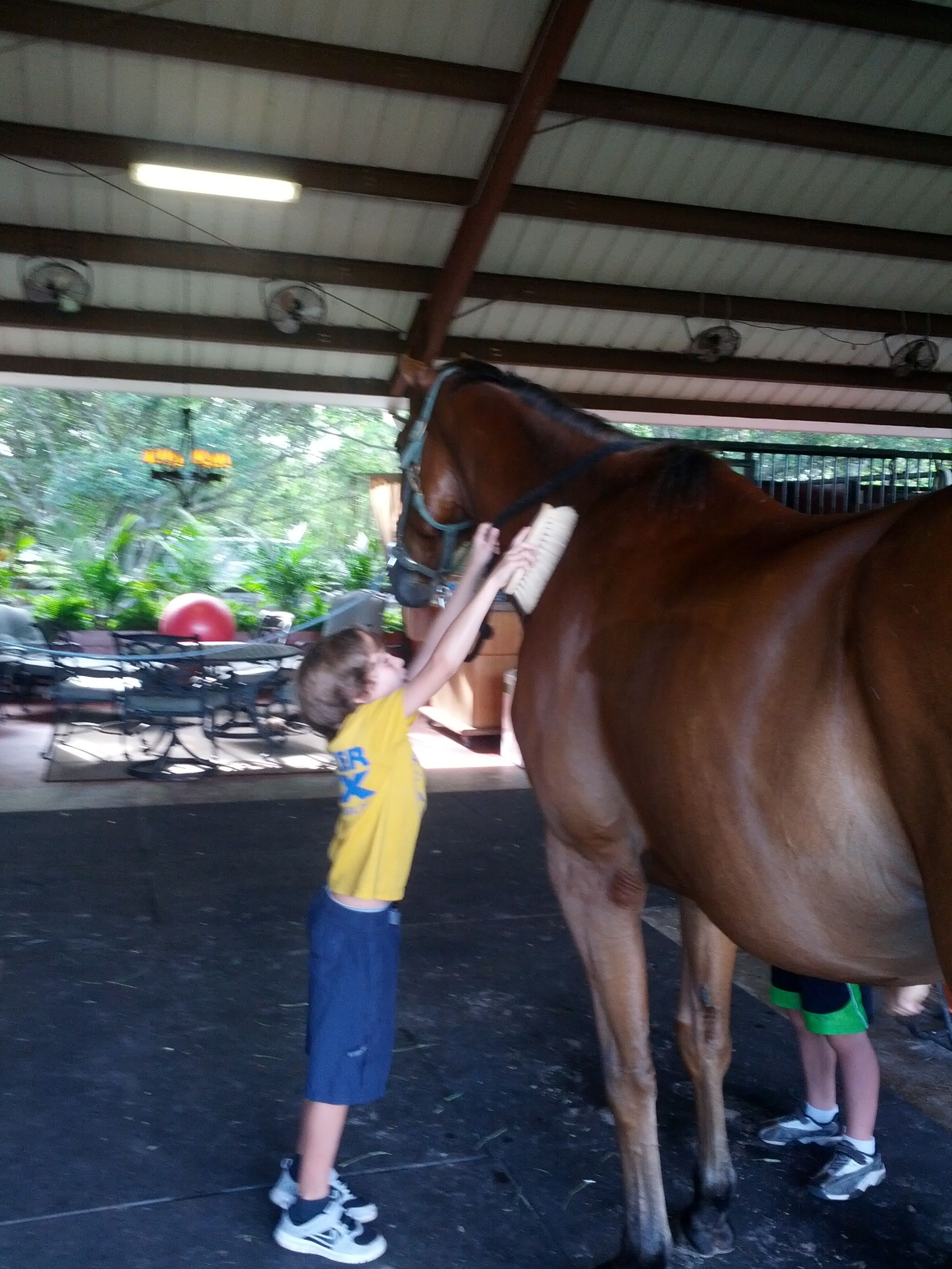 Horseback riding in boca raton