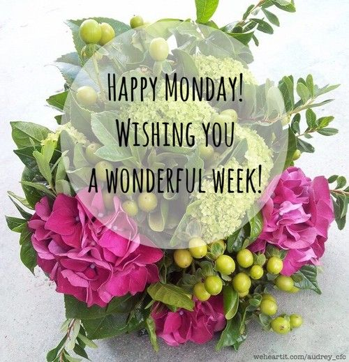 Happy monday greetings morning inspirations in 2018 pinterest happy monday greetings m4hsunfo