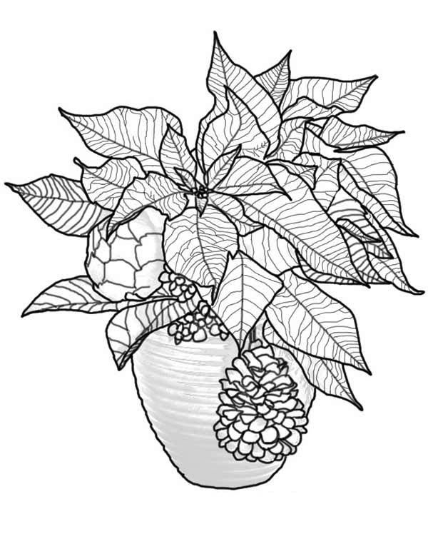 beautiful poinsettia flower bouquet coloring page