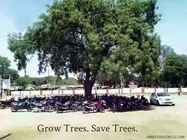 Grow Trees Save Trees Self Improvement Quotes Pinterest Self