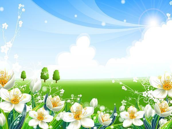 خلفيات ناعمة مريحة خلفيات بألوان جميلة Flower Backgrounds Summer Wallpaper Cool 3d Wallpapers