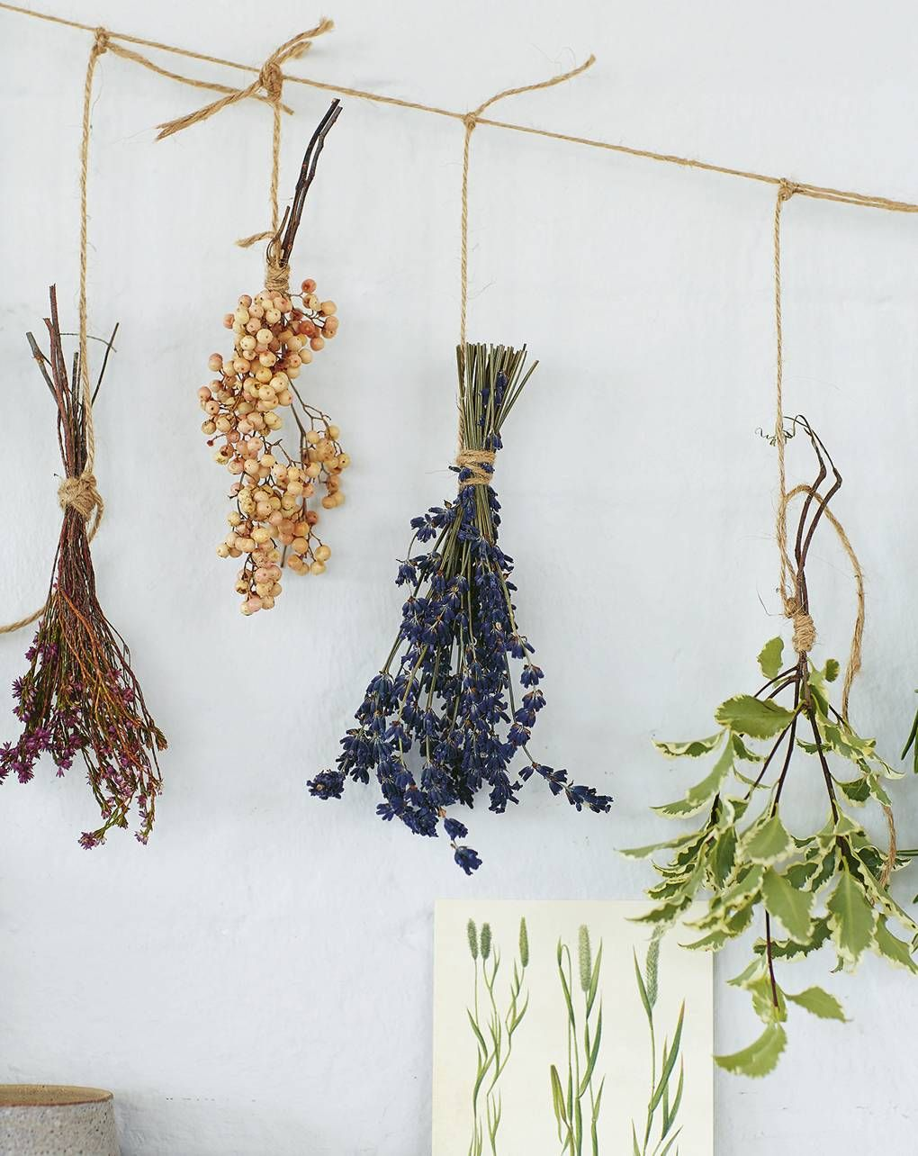 How to dry flowers | House & Garden