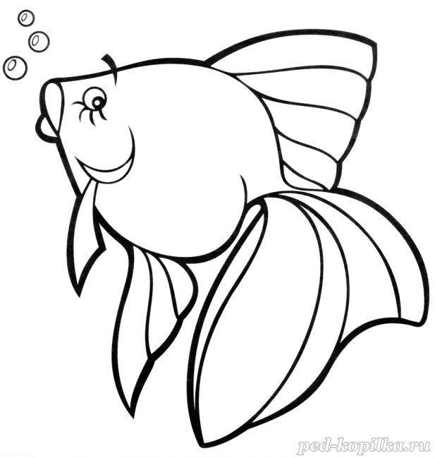 Раскраска. Рыбка | Раскраски, Животные, Для детей