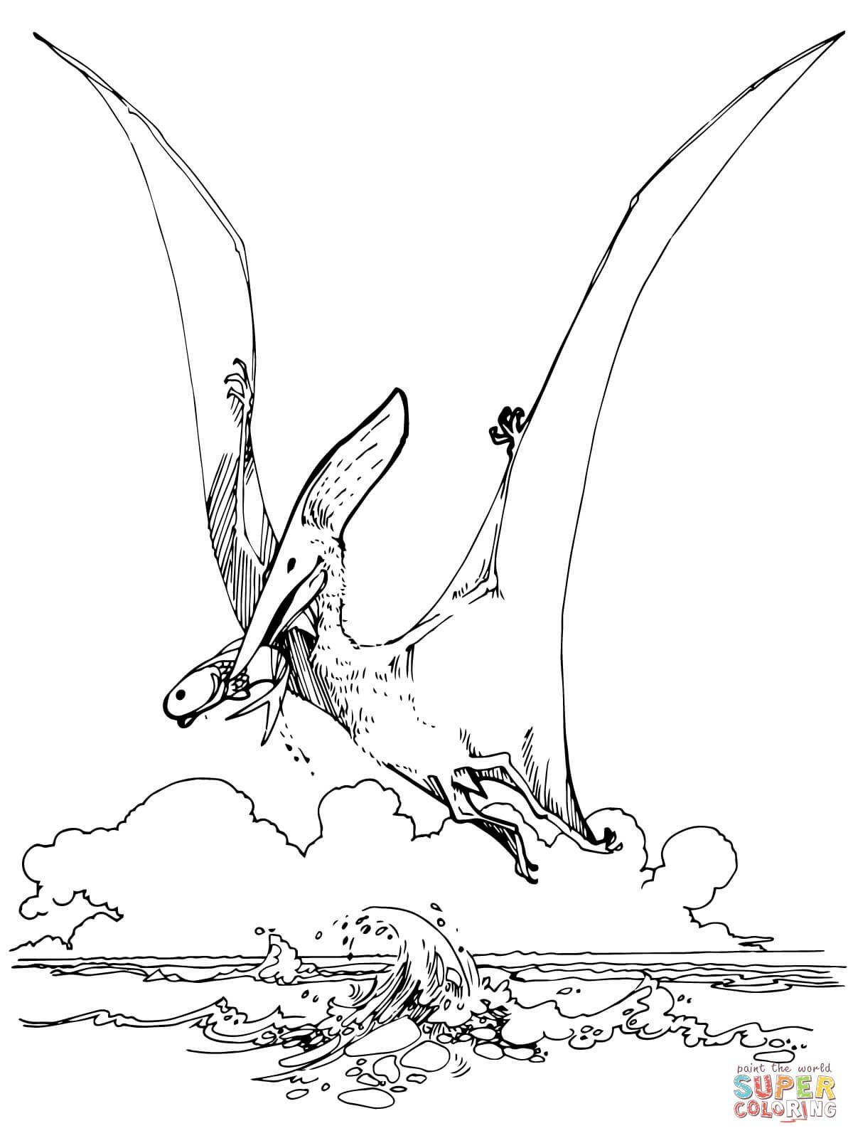 Pteranodon Pterosaur Super Coloring In 2019 Dinosaur Coloring