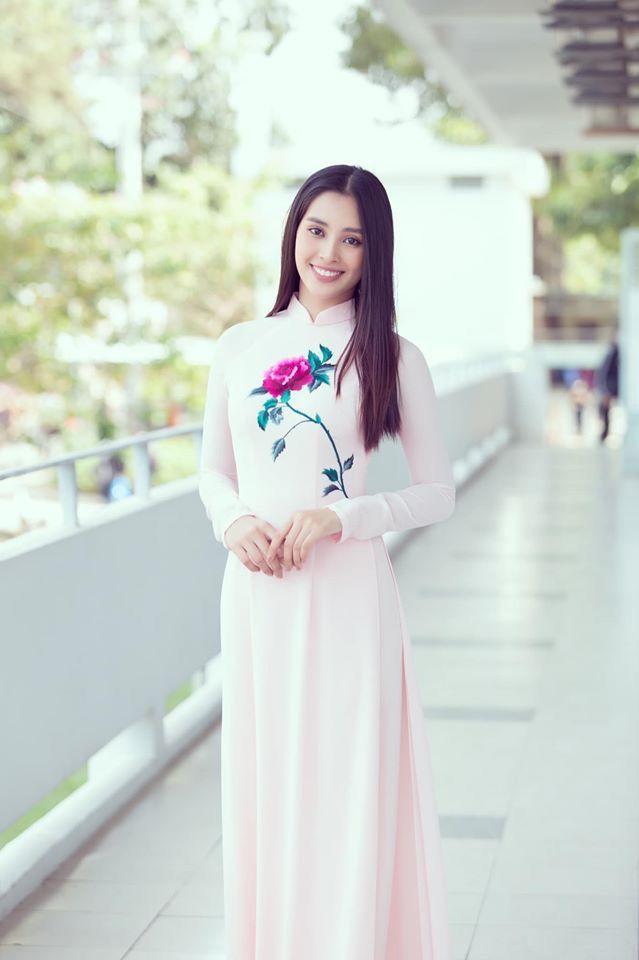 Pin on Trần Tiểu Vy