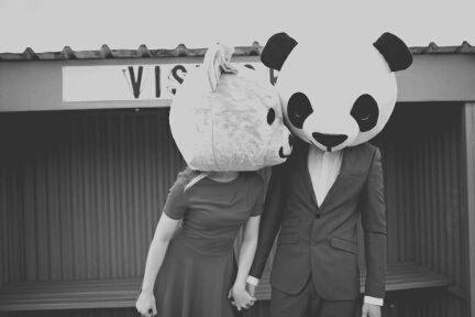 Imagem de love, panda, and couple