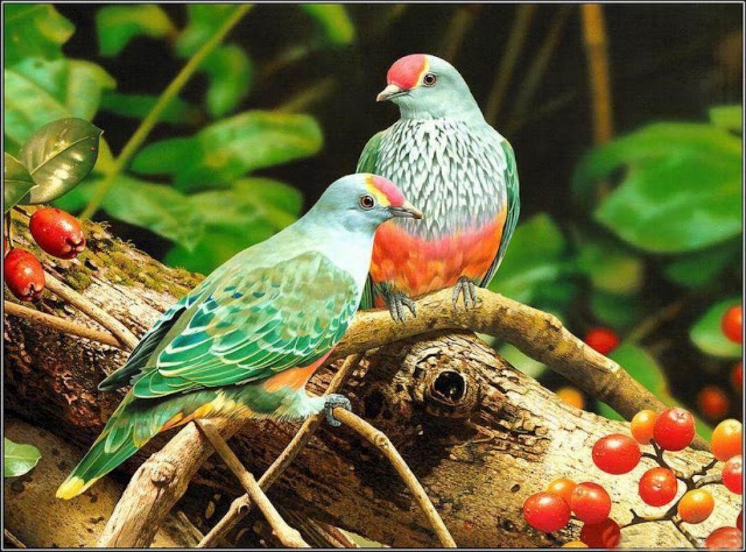 Birds Animals Mobile Wallpapers 1 Beautiful Bird Wallpaper Birds Wallpaper Hd Pet Birds
