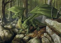 http://vignette2.wikia.nocookie.net/forgottenrealms/images/8/80/Green_dragon_-_Lars_Grant-West.jpg/revision/latest?cb=20090519094156