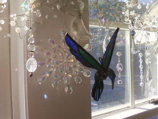hummingbird in front window