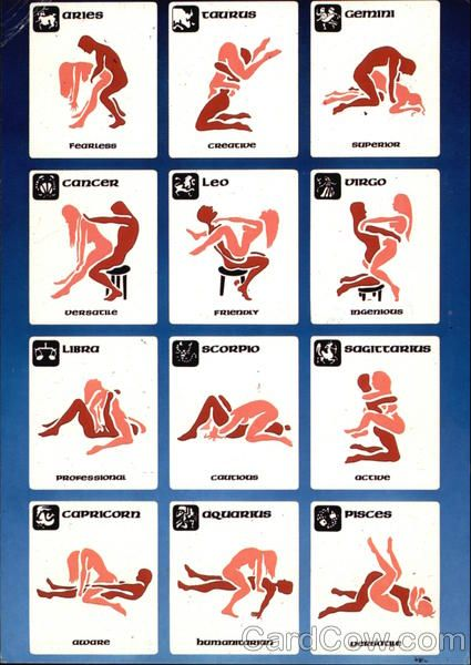 Sex position based on signs