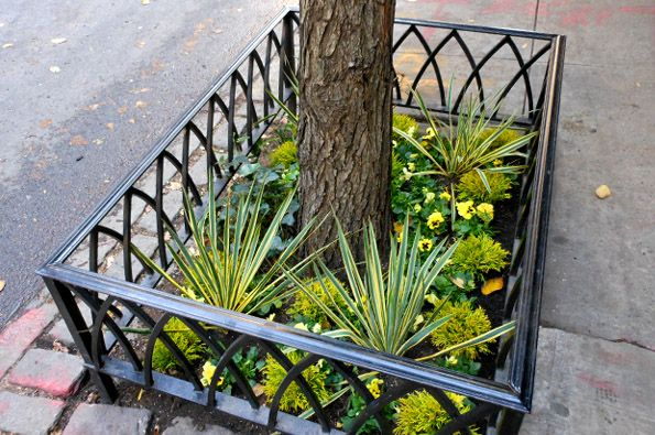 Ten Top Tips For Small Shady Urban Gardens: Tree Pit Plantings Or Patio Gardens Designed By Jeffrey
