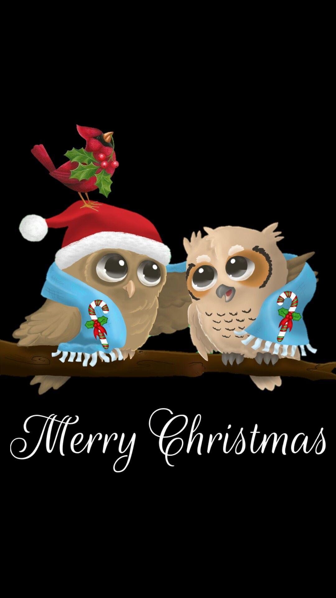 Iphone Wall Merry Christmas Tjn Owl Wallpaper Holiday Owl Holiday Iphone Wallpaper