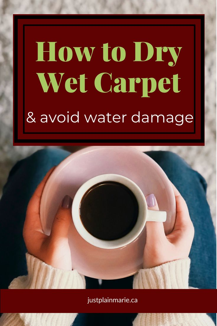 How To Dry Wet Carpet And Avoid Water Damage