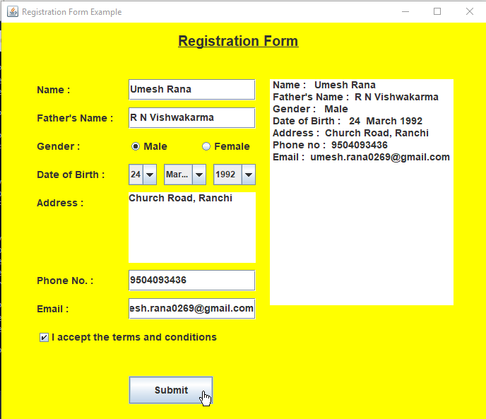 Java Swing Registration Form