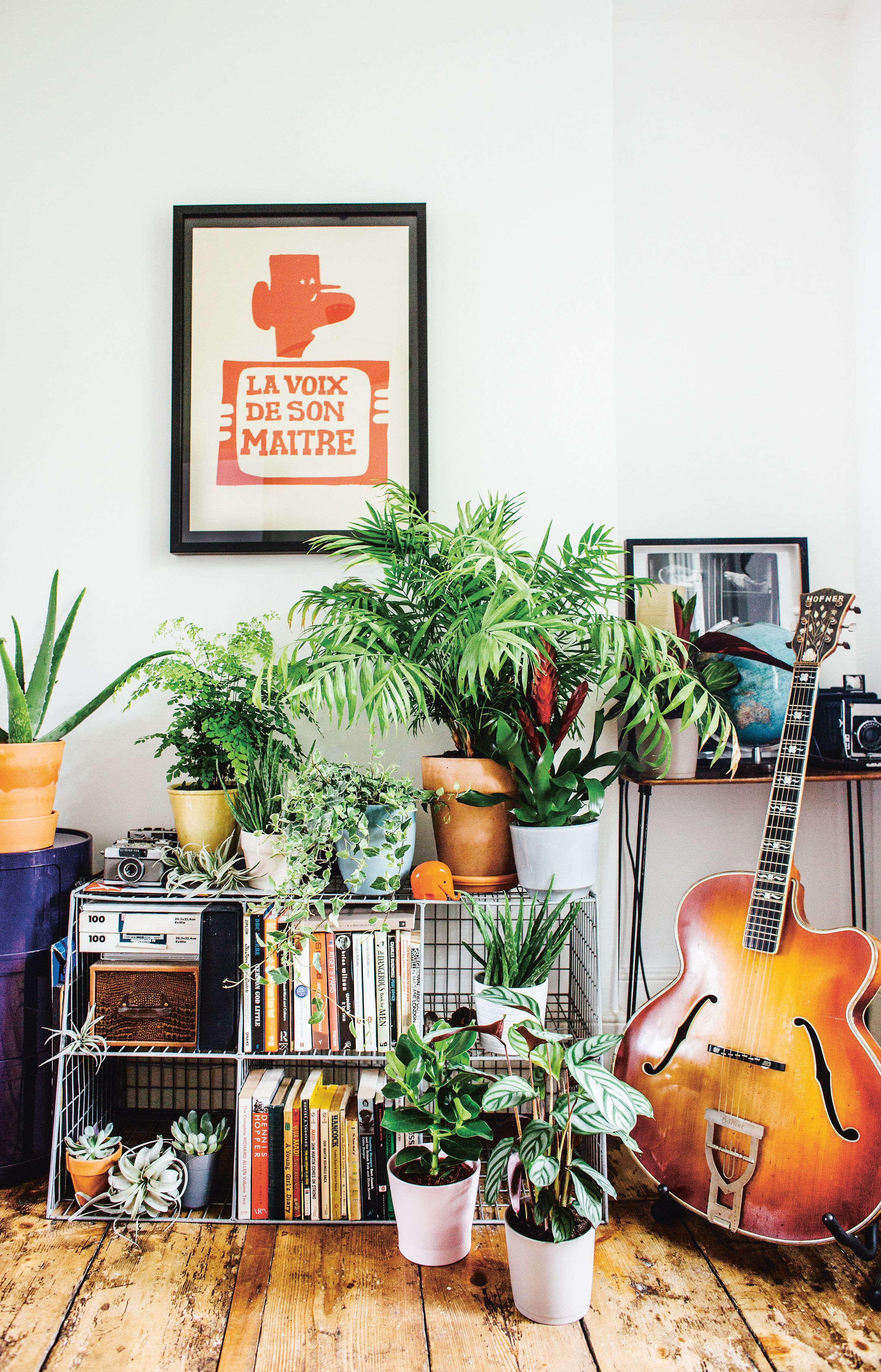 A Guide To Indoor Gardening Our Review Of Living With